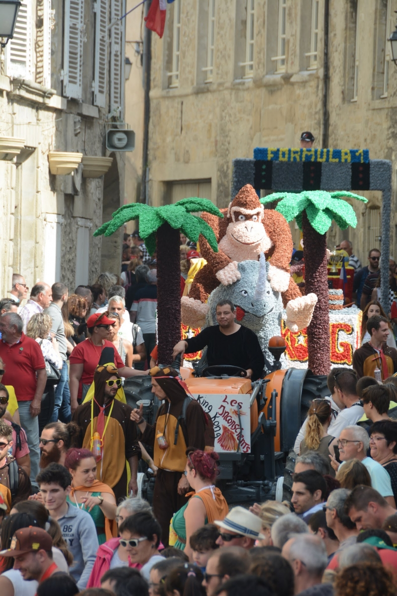 2017 (2.3 et 4.06 ) carnaval Etoile (298)