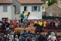 2017 (2.3 et 4.06 ) carnaval Etoile (8)