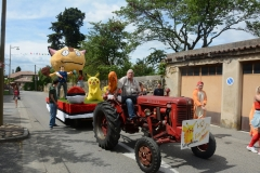 2017 (2.3 et 4.06 ) carnaval Etoile (83)